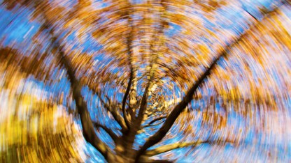 Dizziness Have You Spinning? Here are 8 Reasons and Treatments to Try