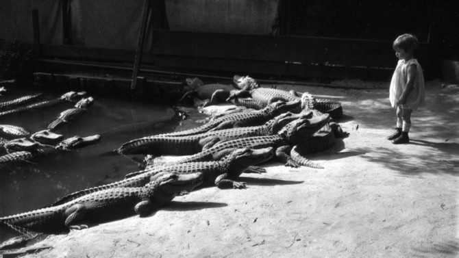 The most frightening zoo in American history